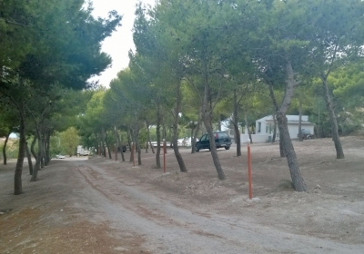 Campeggio Bungalow Camping La Pineta Village